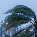 Siete ideas para proteger a tu familia en caso de un huracán