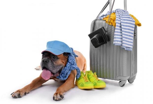 ¡Me voy de vacaciones!