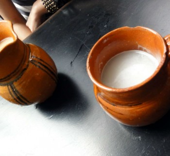 pulque chica