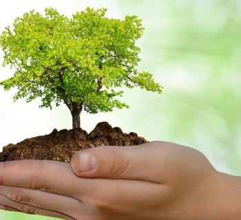 Inventos amigables con el medio ambiente