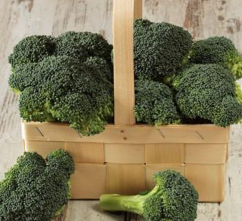 El brócoli es un maravilloso antioxidante