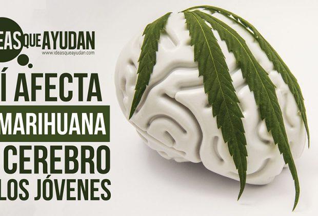 marihuana el cerebro de los jóvenes