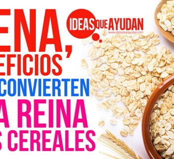 avena beneficios