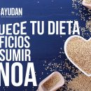 beneficios de la quinoa