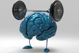 cerebro ok