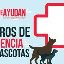 Números de emergencia para mascotas