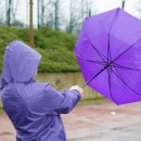 Medidas de protección ante fuertes vientos