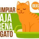 Cómo limpiar la caja de arena de tu gato