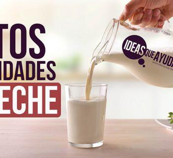 mitos y realidades de la leche