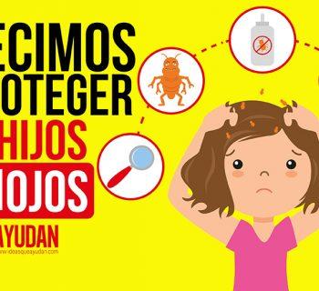 Cómo prevenir los piojos