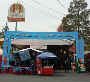 Esto es lo que puedes ver en la Feria de las Nieves