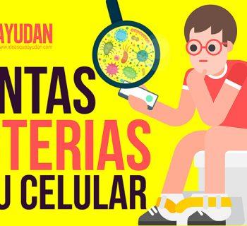 Cuántas bacterias tiene tu celular