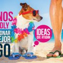 pet friendly para vacacionar