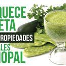 propiedades medicinales del nopal