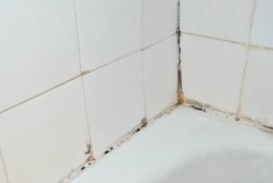Ideas para eliminar el moho de los azulejos