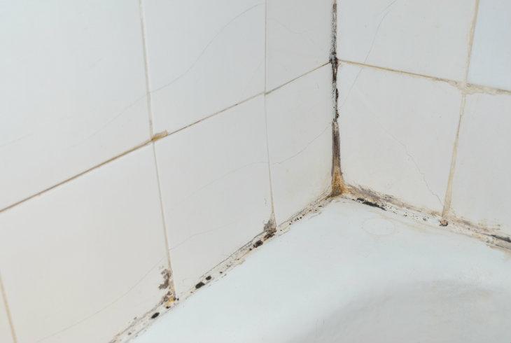 Ideas para eliminar el moho de los azulejos - Limpiar azulejos bano moho ...