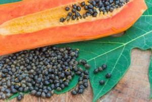 Te conviene comer semillas de papaya