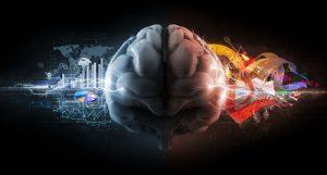 cerebro_masculino