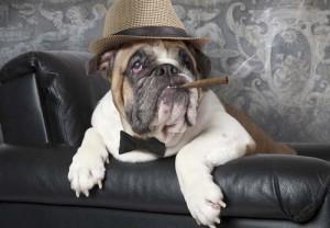 fumadores_pasivos