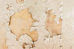 humedad_paredes
