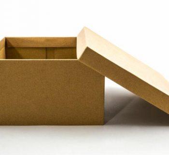 Todo lo que puedes hacer con una caja de zapatos