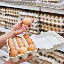 Cómo reutilizar el cartón del huevo
