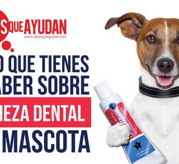 limpieza dental de tu mascota