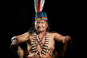 Los peligros de la ayahuasca, la droga hispster de moda
