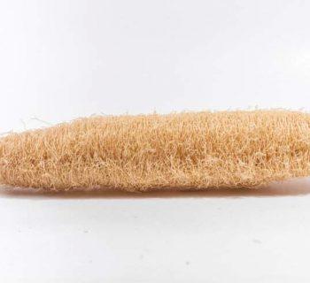 Lo bueno y lo malo de las esponjas vegetales en la ducha