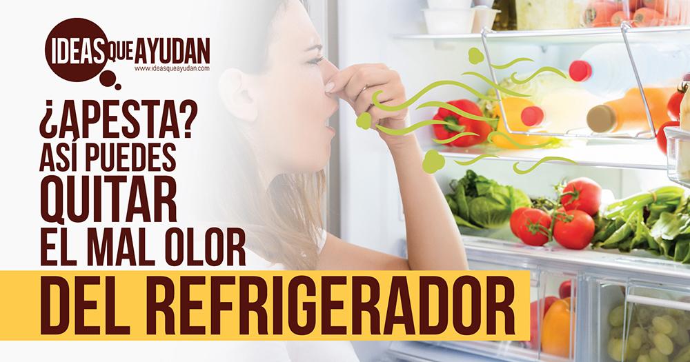 Ideas Para Quitar El Mal Olor Del Refrigerador Ideas Que Ayudan