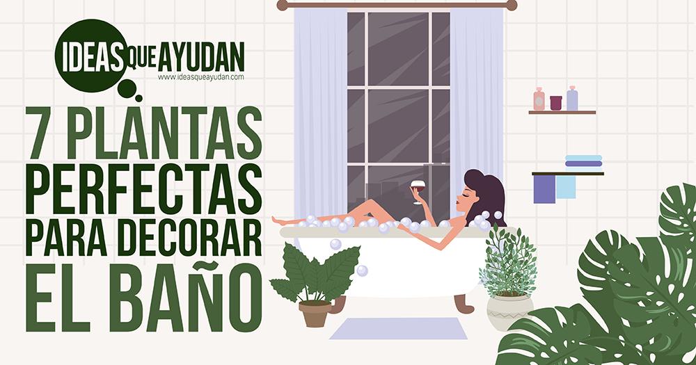 7 plantas para decorar el baño