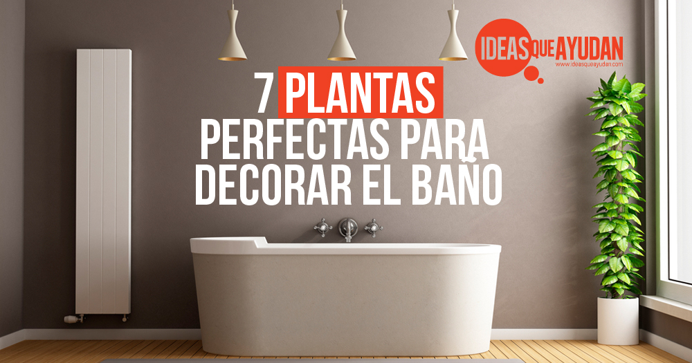 7 plantas perfectas para decorar el ba o ideas que ayudan for Plantas de plastico para decoracion