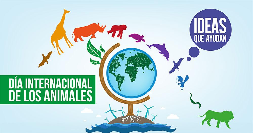 Dia Mundial De Los Animales A Cuidarlos