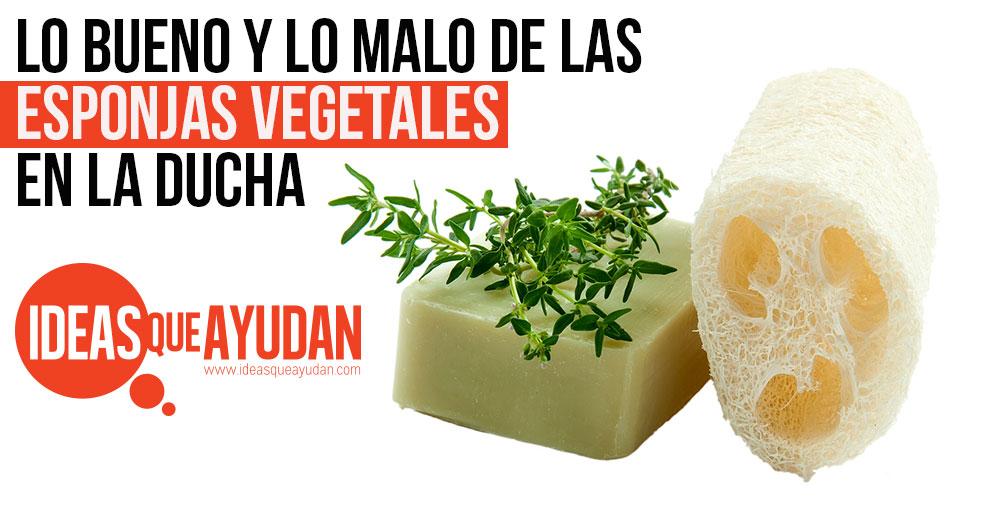 lo bueno y lo malo de las esponjas vegetales