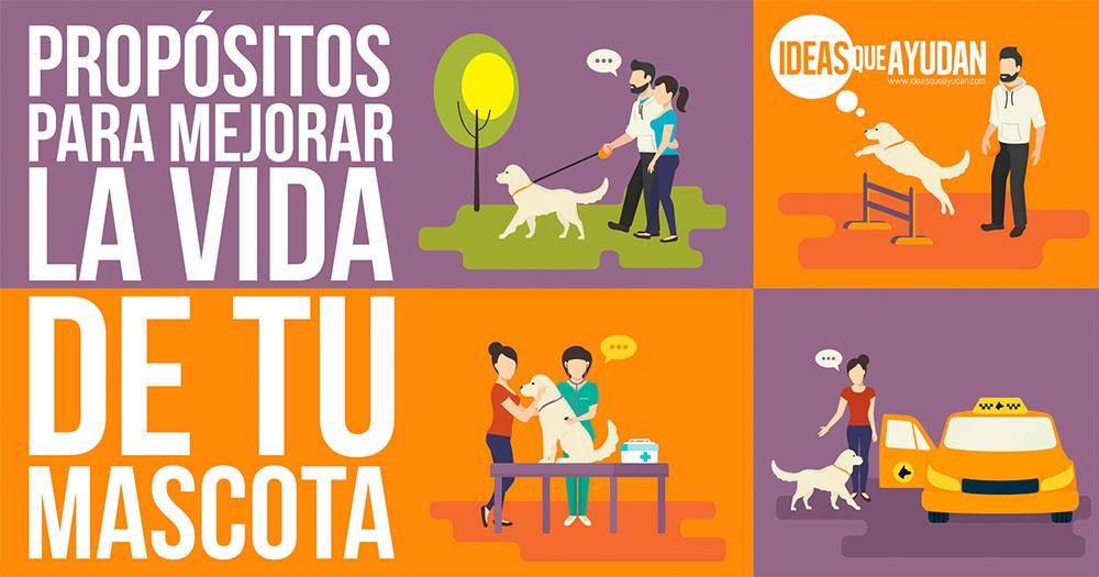 Propositos para mejorar la vida de tu mascota