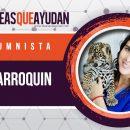 Liz Parroquin