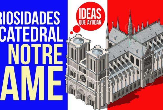 curiosidades de la catedral de Notre Dame