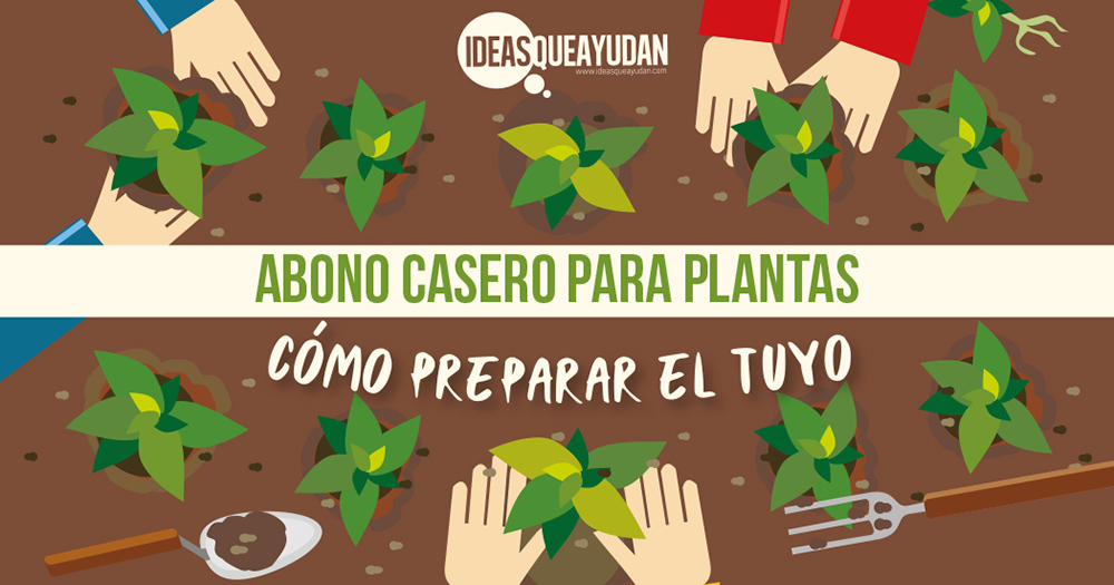 Abono casero para plantas