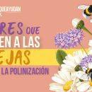 Flores que atraen a las abejas y ayudan a la polinización