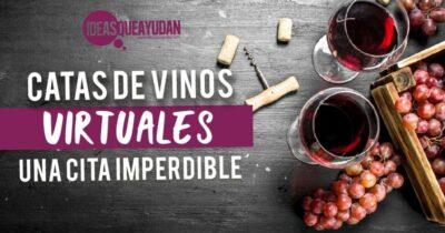 catas de vinos virtuales